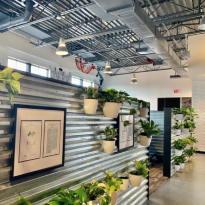 LEVO-Health-Tampa-Office-Living-Wall